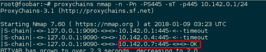 Proxychains nmap output